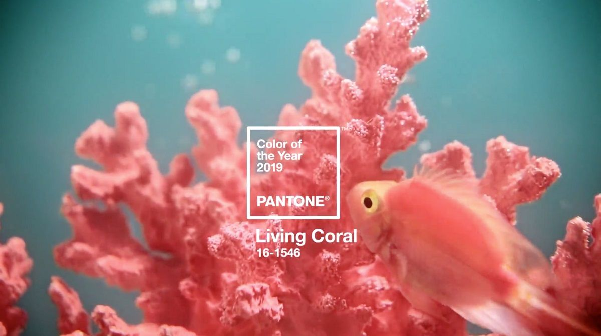 Indulge your Interiors in Pantone of the Year