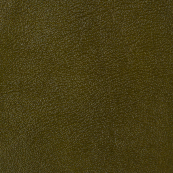 ETERNITY OLIVE LEATHER SWATCH