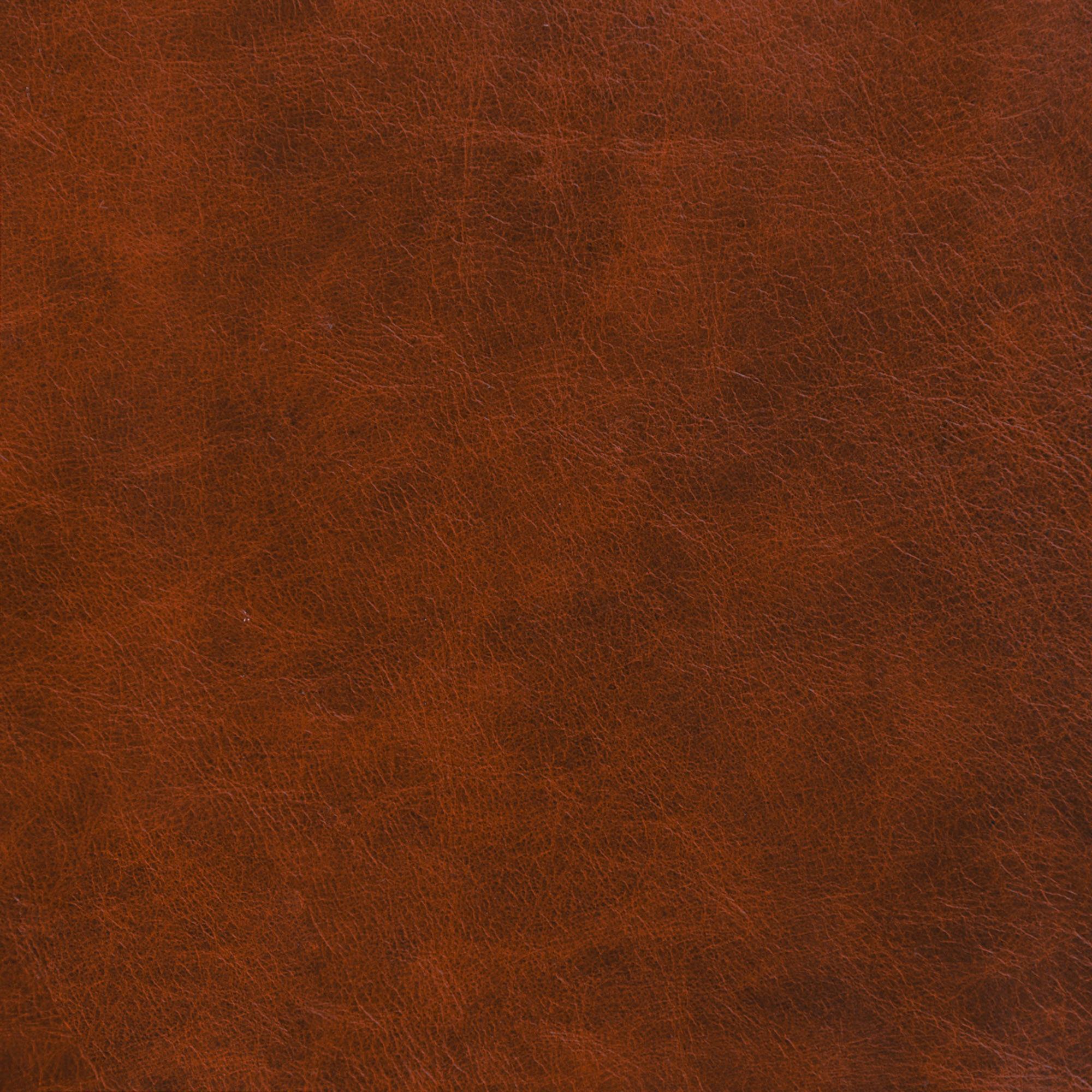 Whiskey Leather Swatch