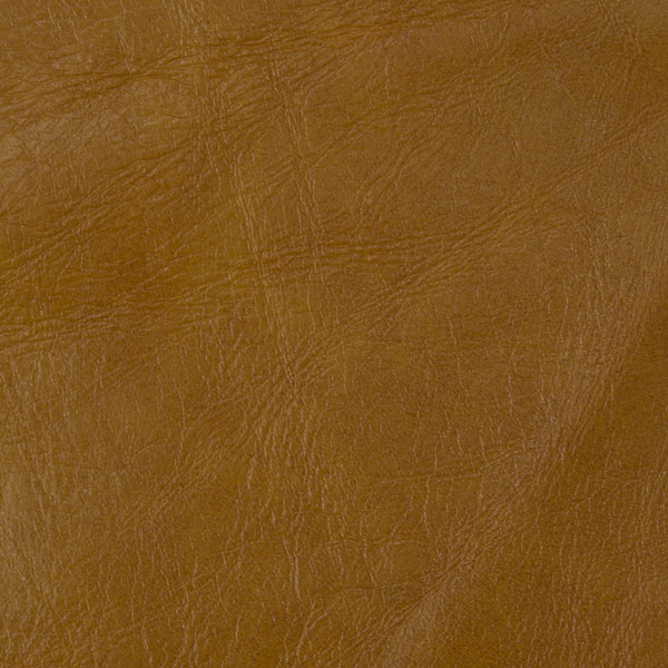 Tango Gold Leather Swatch