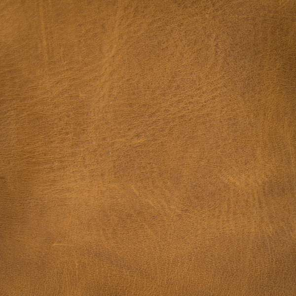 Vintage Tobacco  Leather Swatch
